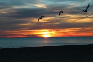 Sunrise-at-Lake-Erie